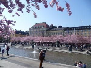 Park (Stockholm)